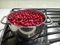 Cranberries_2