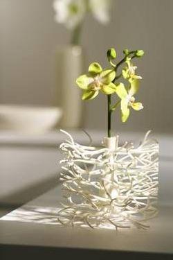 Hidden_vase